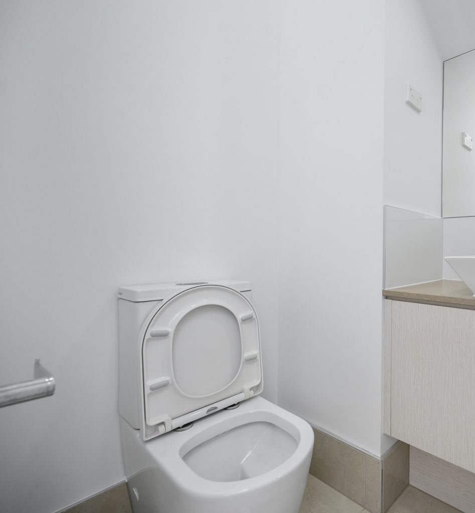 Best Chair Height Toilets for Tall and Elderly
